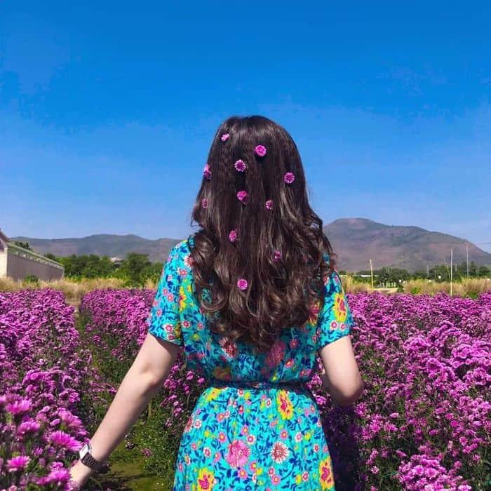 Nắng lên check in địa điểm siêu xinh với background tuyệt vời ở vườn hoa thạch thảo Vũng Tàu