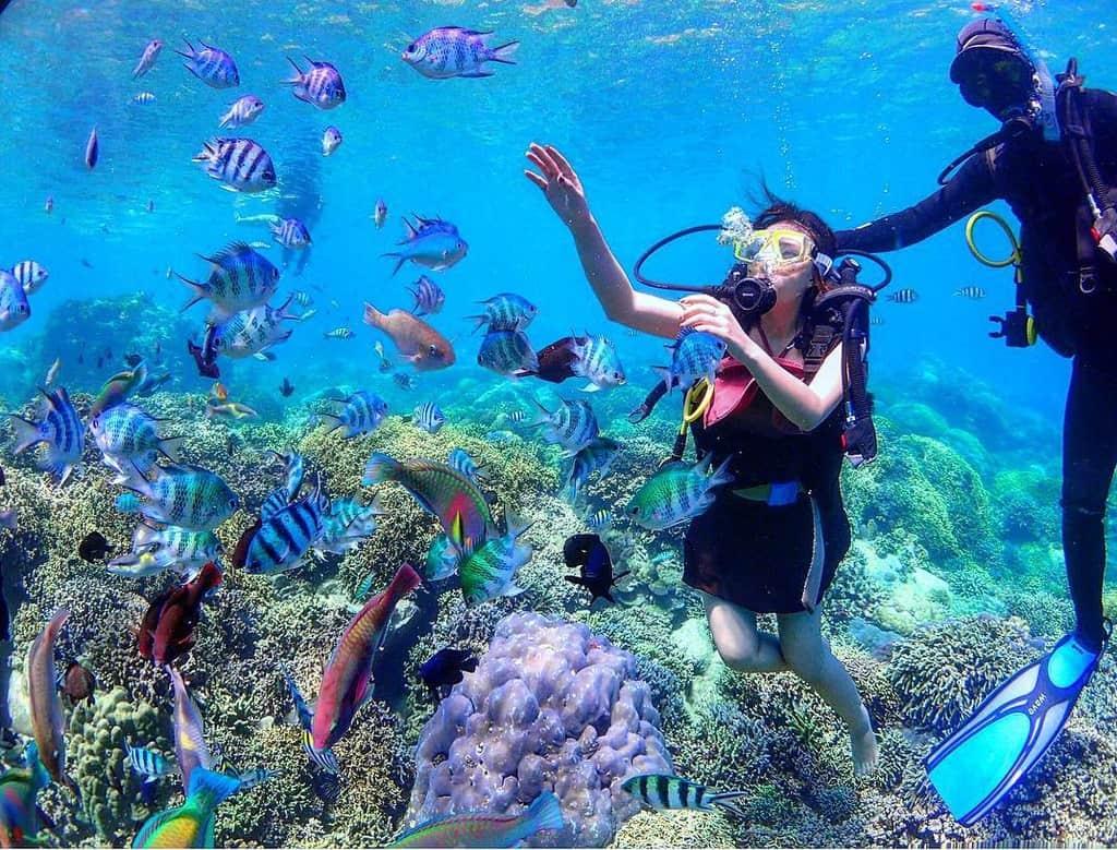 Các rạn san hô rực rỡ sắc màu. Hình: maxineeeecc