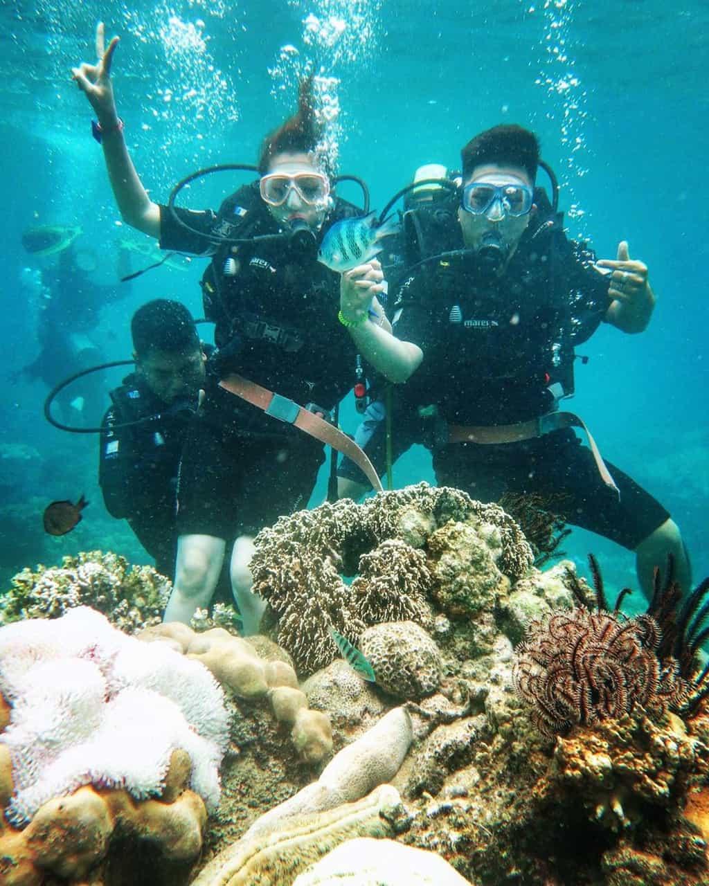 Thỏa sức khám phá đáy biển. Hình: @trangthanhthy_thy