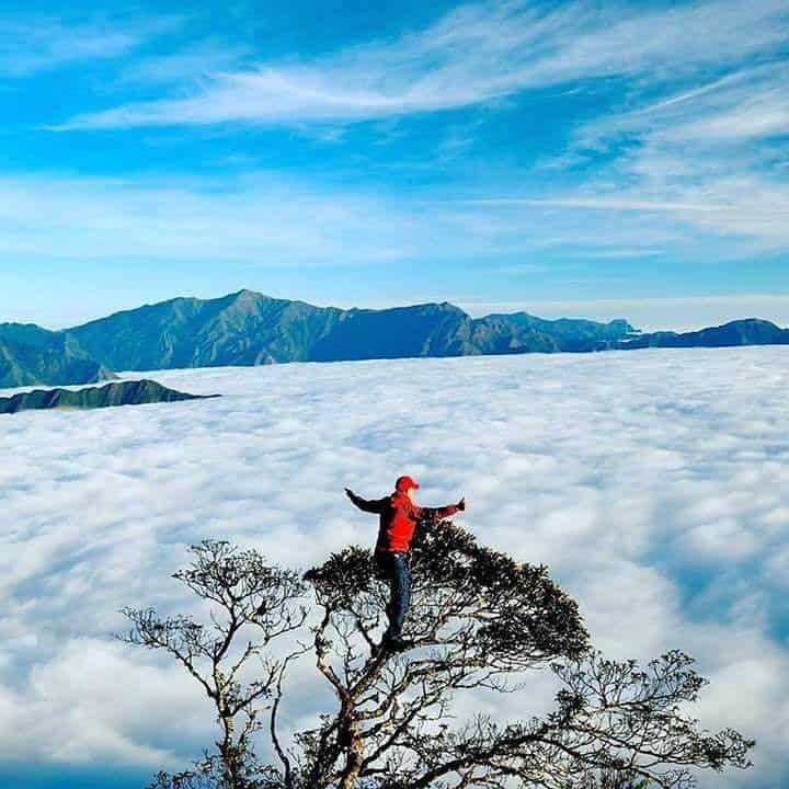 Săn mây ở bản Y Tý hành trình xao xuyến con tim