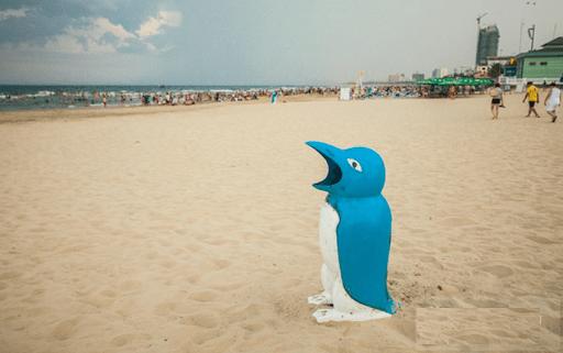Chim cánh cụt xin rác - Một cách tuyên truyền nâng cao ý thức cộng đồng - Ảnh ST