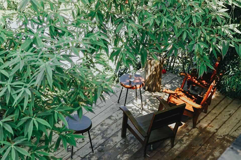 Cafe Tiệm Cheo Veo. Hình: Hoàng Linh Hà