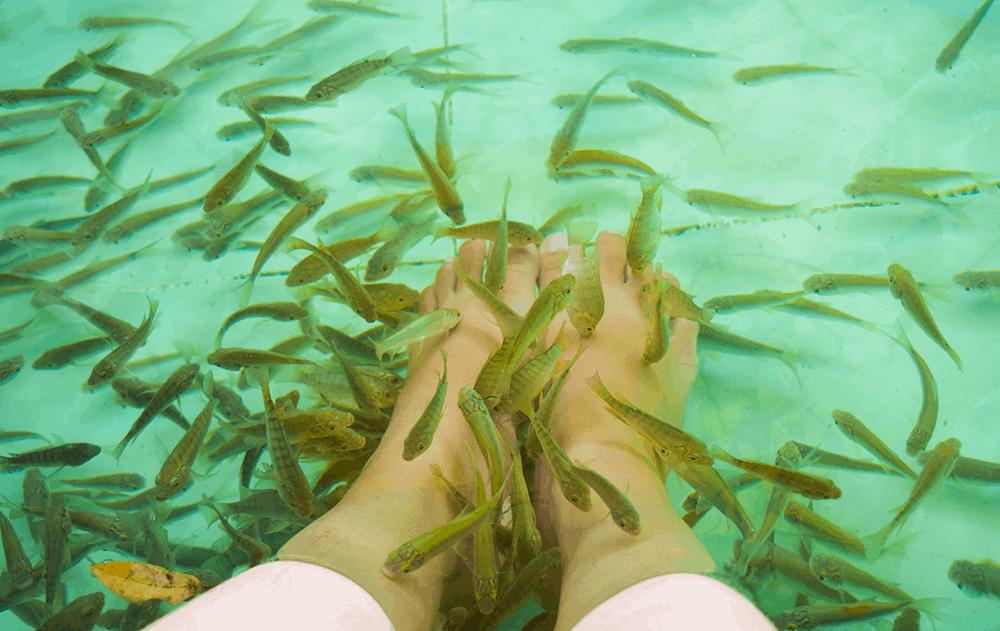 Massage đem đến cảm giác thư giãn và vô cùng thú vị - Nguồn ảnh: internet