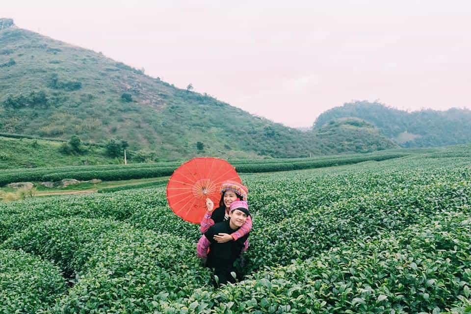 Đồi chè trái tim ở Mộc Châu - điểm đến không thể bỏ qua của các cặp đôi. Hình: Instagram @quynhhoa