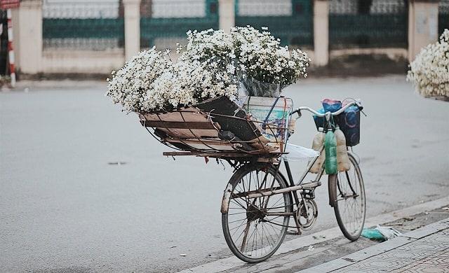 Hà Nội 36 phố phường: Nét đẹp ngàn năm giữa lòng thủ đô hoa lệ