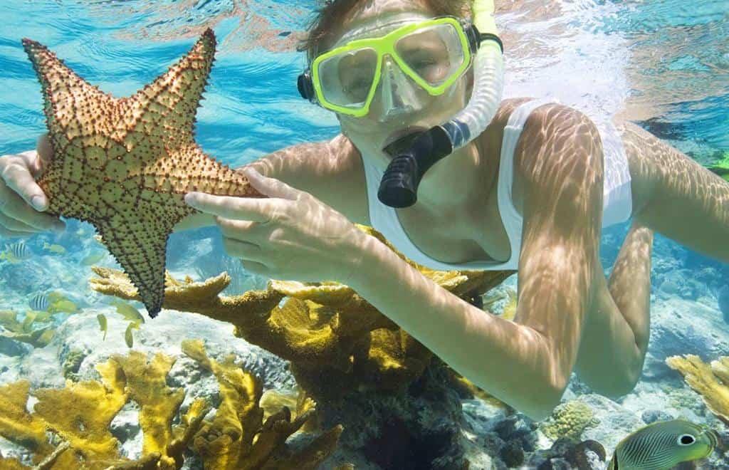 Trải nghiệm lặn ngắm san hô ở Phú Quốc. Hình: Sưu tầm