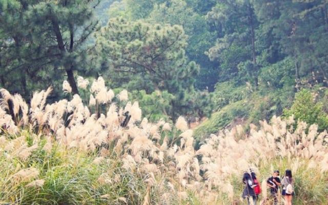 Núi Hàm Lợn là nơi cao nhất Hà Nội. Ảnh: Internet