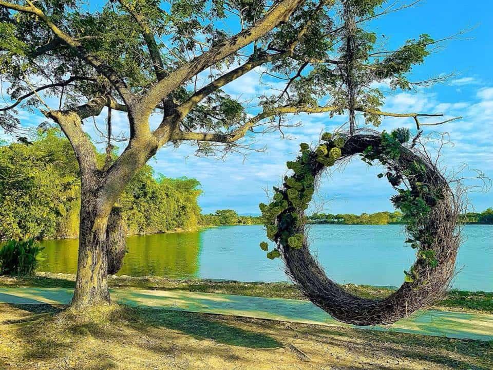 Khu du lịch Suối Mơ điểm dừng chân vui chơi lý tưởng - Nguồn ảnh: Fanpage công viên Suối Mơ