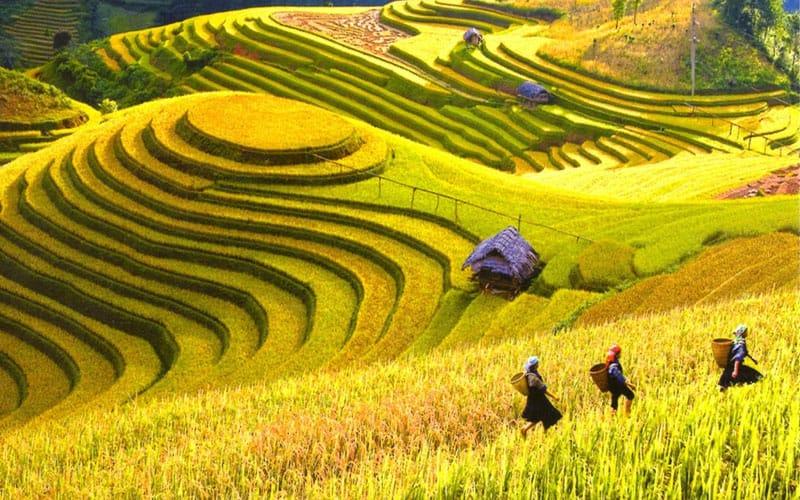 Các địa điểm du lịch Hà Giang đẹp và thu hút nhất