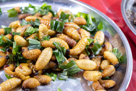"""Những món ăn """"kinh dị"""" từ đuông dừa"""