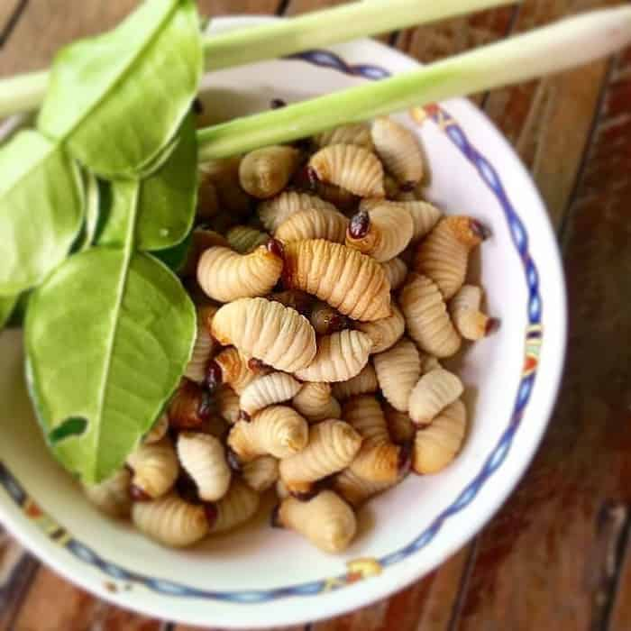 những món ăn từ đuông dừa của ẩm thực miền Tây