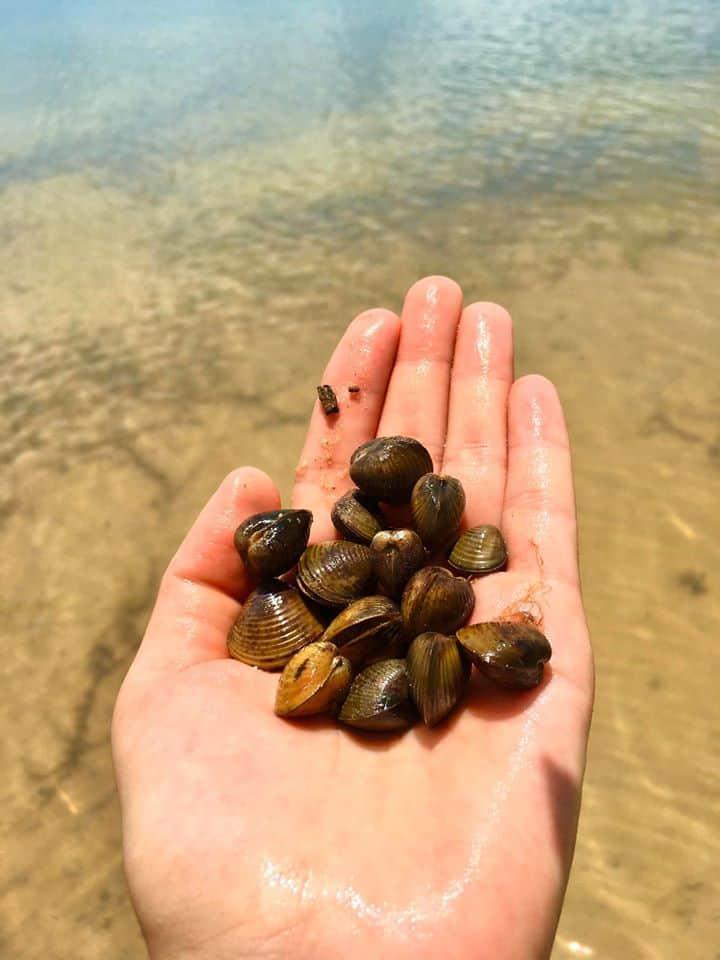 Câu cá, bắt chem chém... là những hoạt động bạn có thể trải nghiệm tại đây - Nguồn ảnh: FB Quỳnh Như