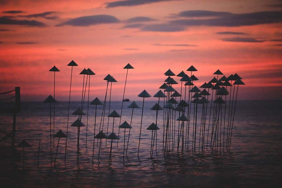 Sunset Sanato Beach Club nơi ngắm hoàng hôn tuyệt đẹp - Nguồn ảnh: Internet