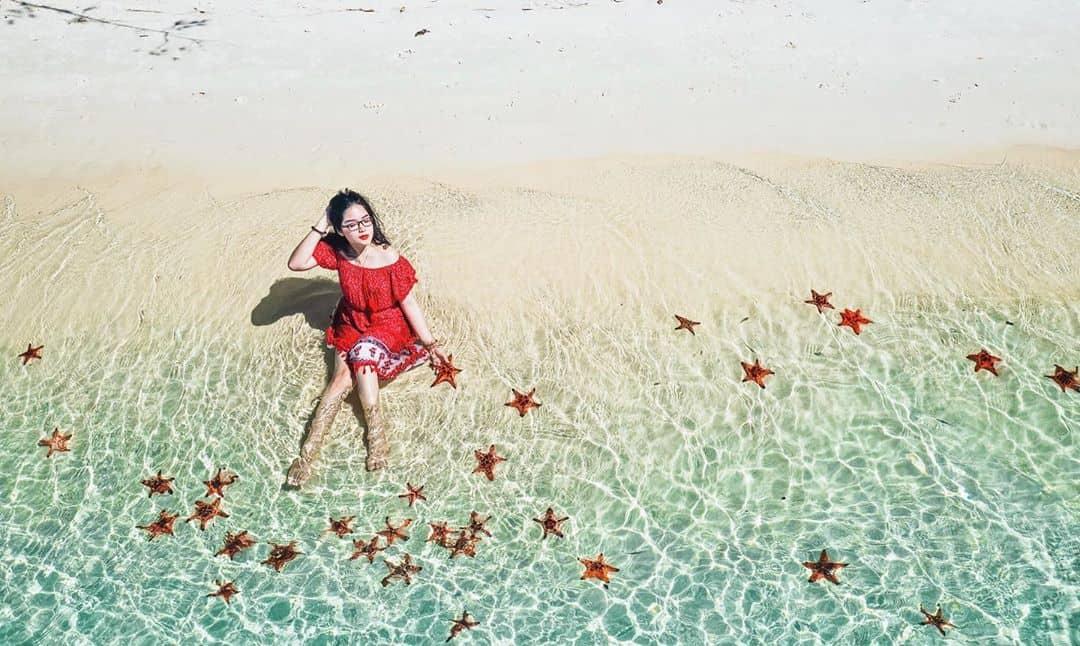 Thỏa sức chụp hình với sao biển. Hình: @thaobeijing