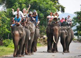 Đắk Lắk chấm dứt mô hình du lịch cưỡi voi tại Bản Đôn