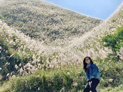Du lịch Bình Liêu mùa cỏ lau