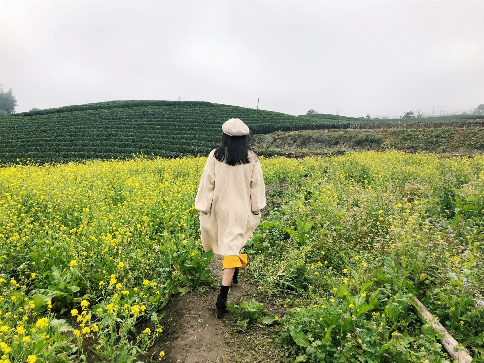 Set áo len cardigan và chân váy rất thích hợp với thời tiết Mộc Châu tháng 11. Hình: Lê Hải