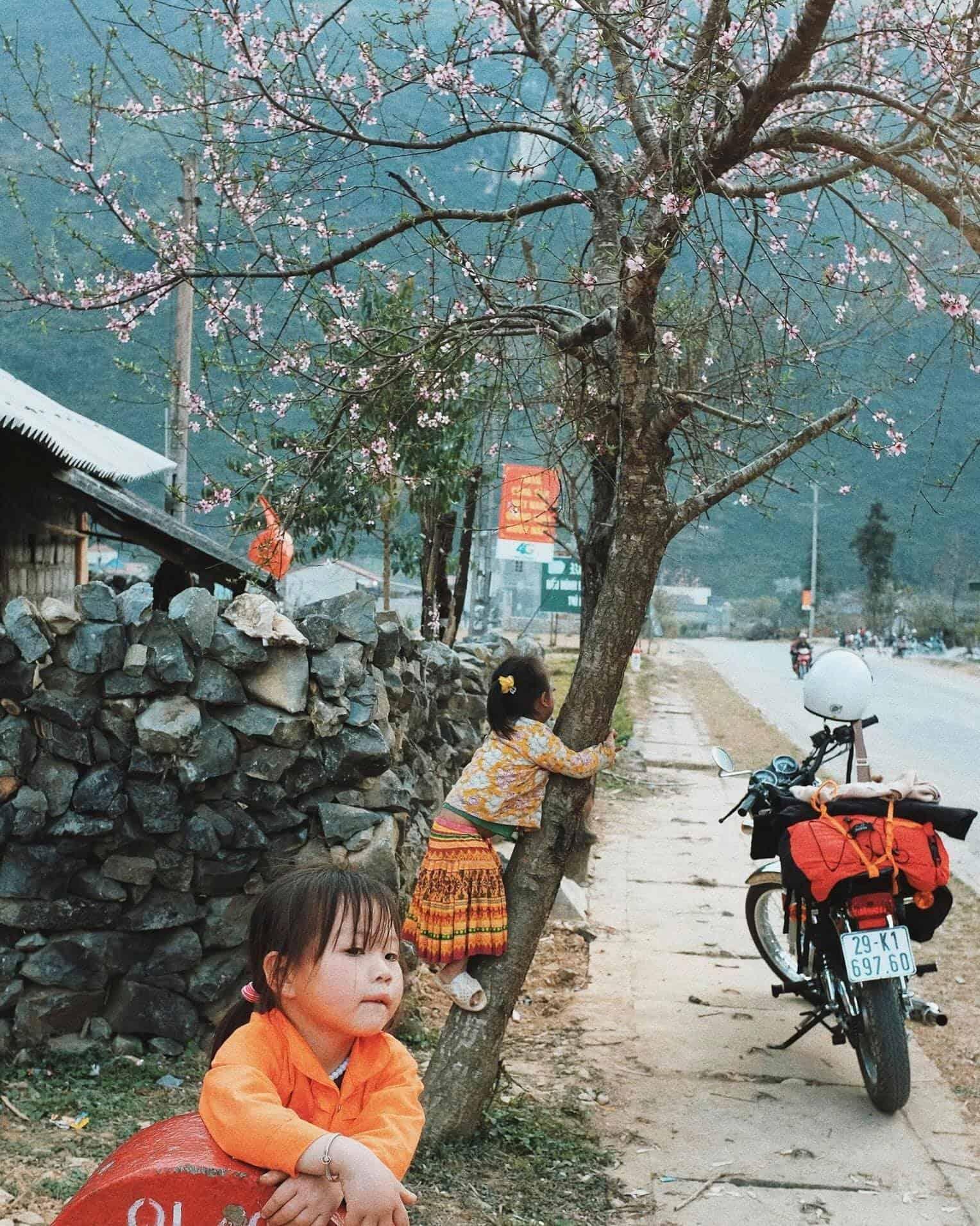 Khung cảnh yên bình của Hà Giang vào tháng 3. Hình: Hai Yen Chu