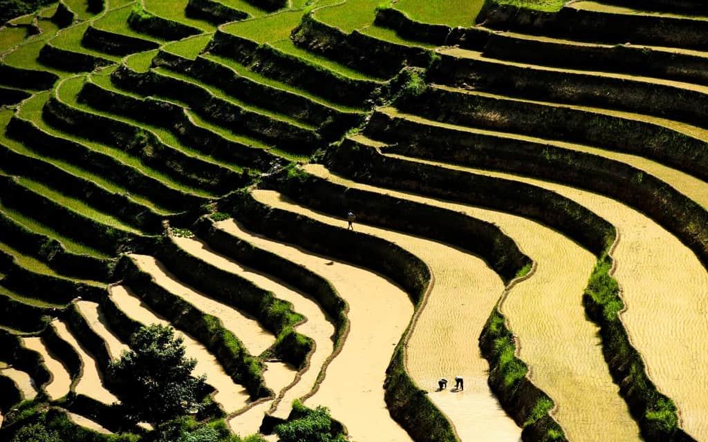 Hà Giang mùa nước đổ. Hình: Chu Việt Bắc