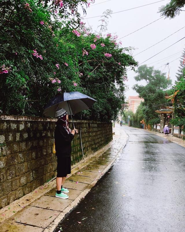 Cơn mưa phùn tháng 11 tại Đà Lạt. Ảnh: Internet