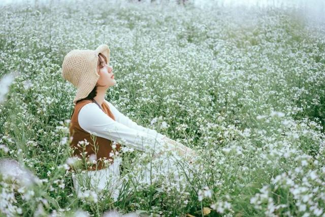 Hoa cải trắng mong manh mà cuốn hút vô cùng. Ảnh: Internet
