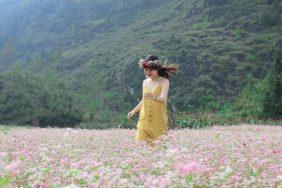 Du lịch Hà Giang tháng 12 có gì đẹp?