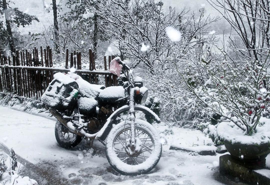 Tuyết phủ trắng xóa Mẫu Sơn. Hình: @tranthuyhai