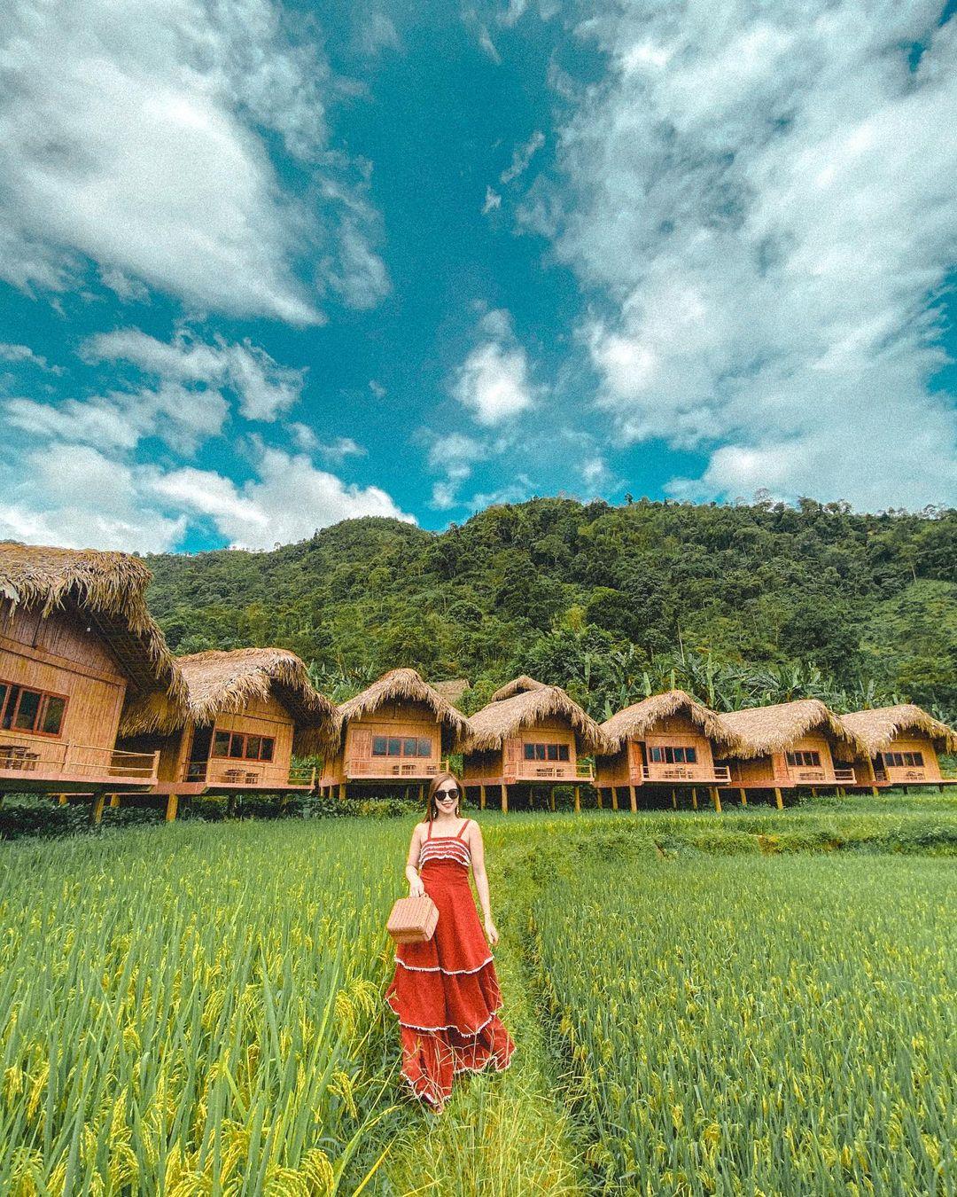 Hoang Su Phi Lodge đẹp tuyệt vời trong mùa lúa. Hình: @hoangyen93123