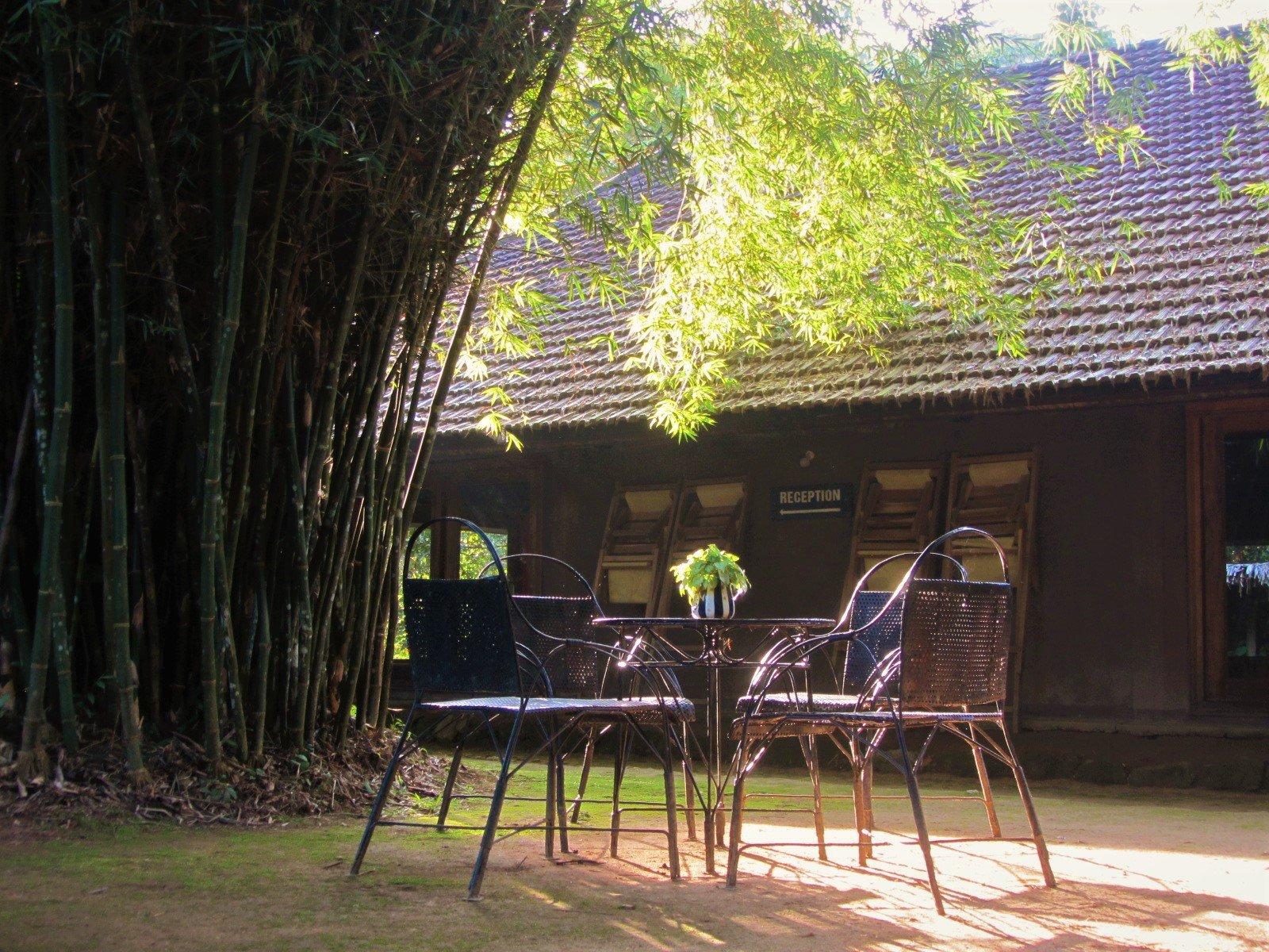 Khung cảnh thanh bình ở Ecolodge Pan House