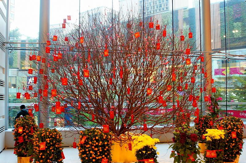Hoa Đào được sử dụng phổ biến để trang trí vào dịp tết Nguyên Đán cho các khách sạn