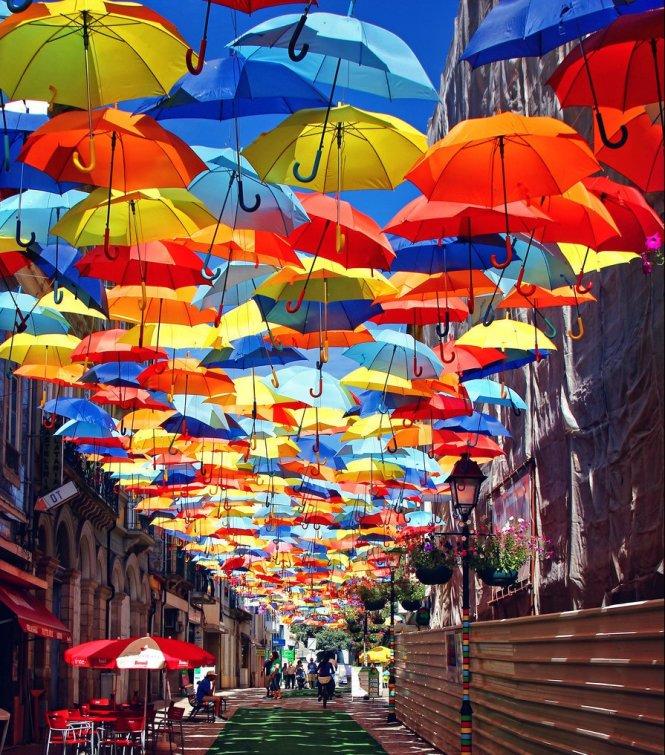 Cuộc sống là một bức tranh đa sắc màu