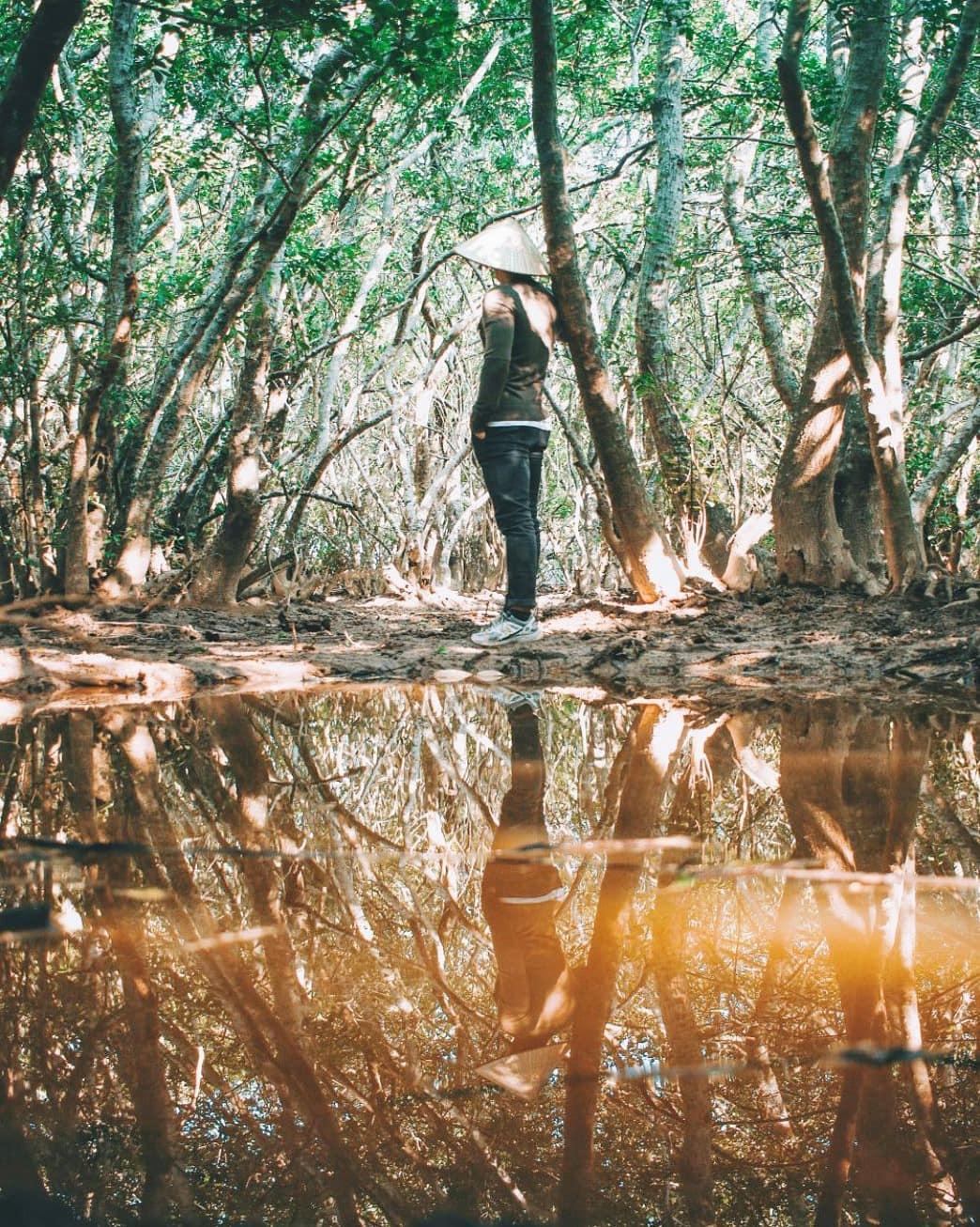 Rừng ngập mặn Rú Chá. Hình: @soaipham
