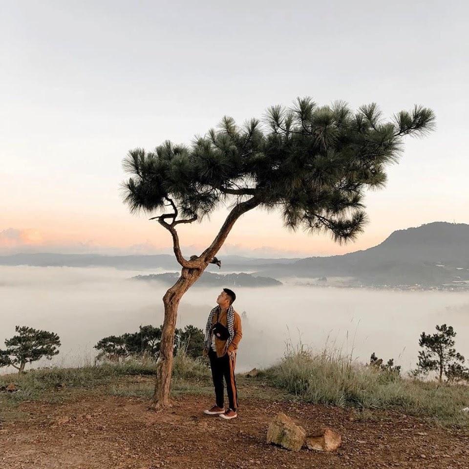 Tết Dương Lịch là thời điểm săn mây lý tưởng ở Đà Lạt. Hình: Sưu tầm