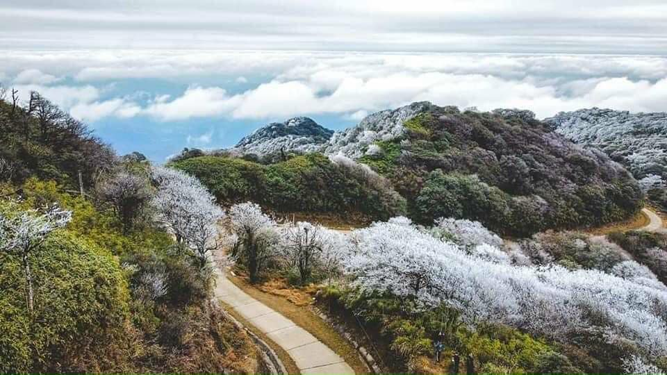 Sapa tuyết phủ trắng xoá đẹp đến ngỡ ngàng - Nguồn ảnh: Giàng Việt Hùng