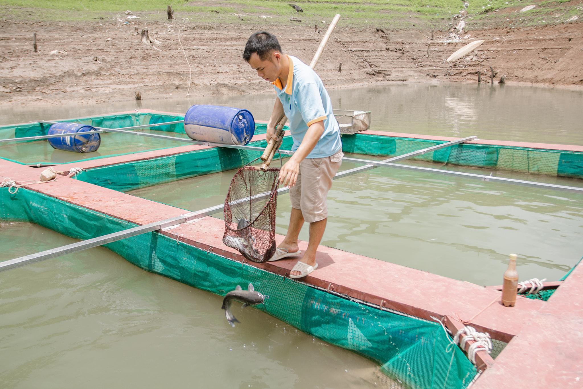 Trải nghiệm hoạt động bắt cá. Hình: Sưu tầm