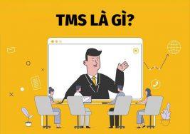 TMS là gì? Những điều cần biết về TMS