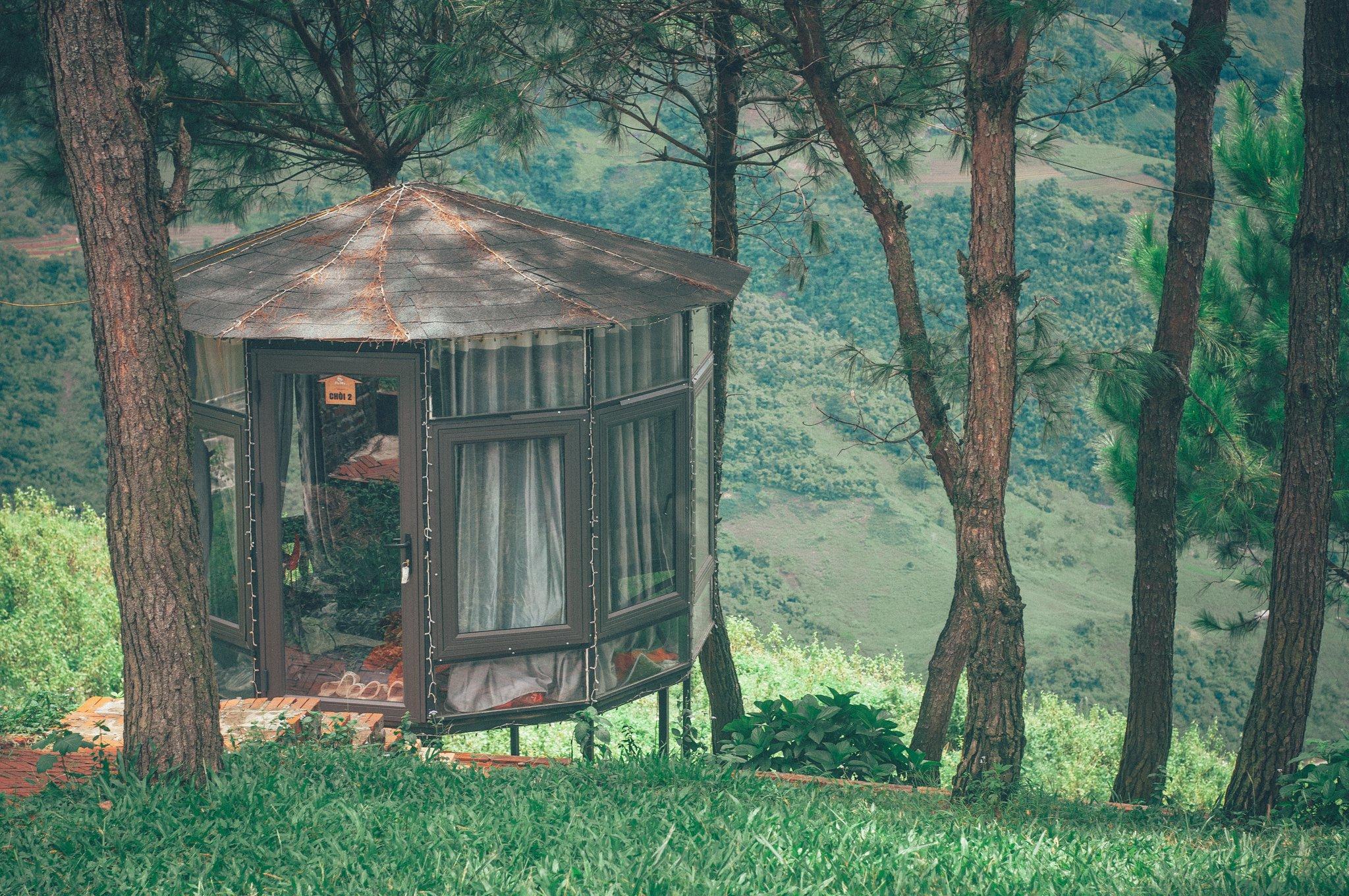 Pu Nhi Farm. Hình: Nguyễn Quỳnh Trang Chu