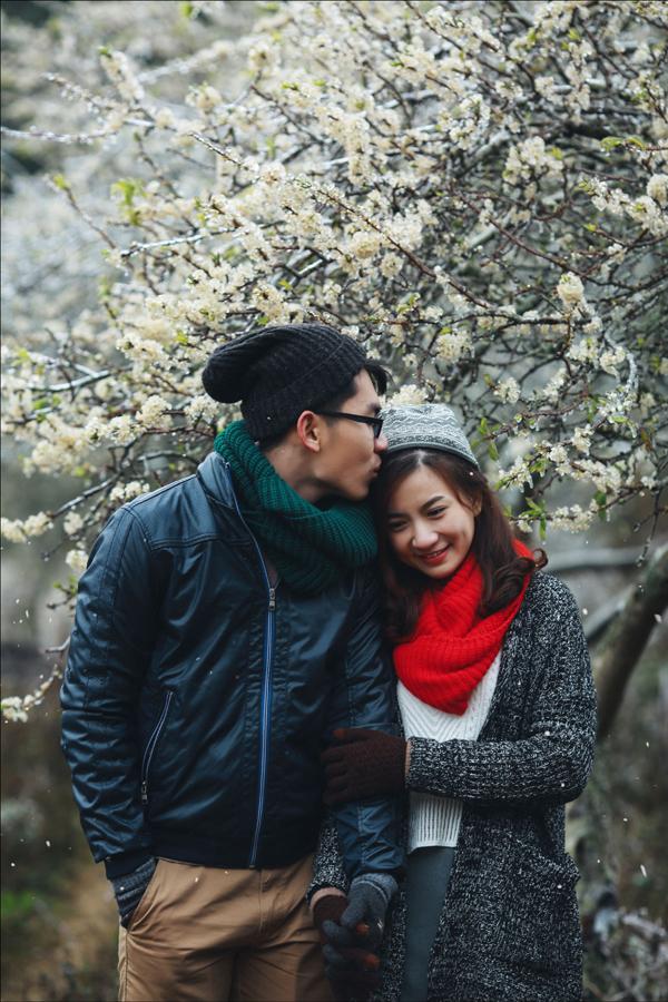 Mộc Châu lãng mạn trong mùa hoa mận. Hình: Sưu tầm