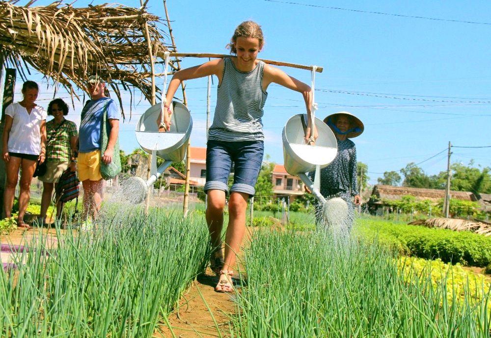 Du lịch nông nghiệp. Hình: Sưu tầm