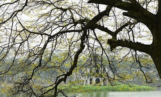 Tháng 4 Hồ Gươm cũng được khoác lên một tấm áo mới với màu xanh mơn mởn
