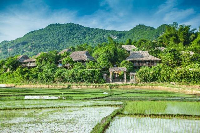 Toàn cảnh Mai Châu Ecolodge Resort rất mộc mạc và giản dị. Ảnh: Internet