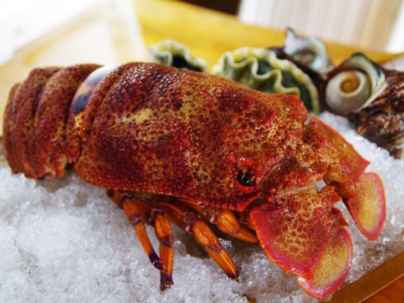 Thận trọng khi ăn các loại hải sản lạ. Hình: Sưu tầm