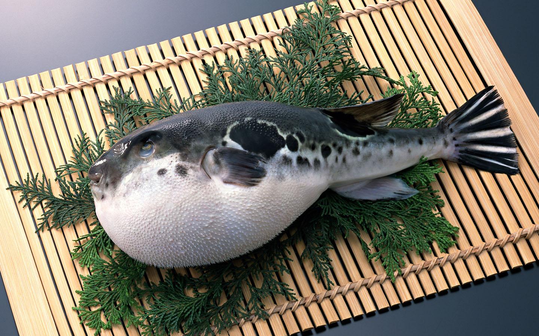 Cá nóc. Hình: Sưu tầm