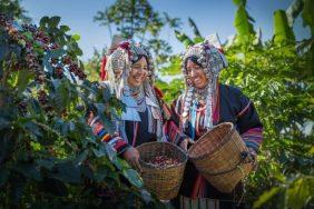 Du lịch Cà phê – Định hướng trong việc đa dạng hóa sản phẩm du lịch Việt Nam
