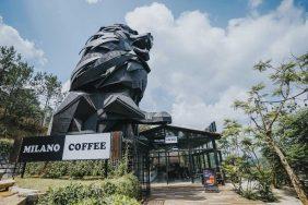 Có một MILANO COFFEE ẩn mình giữa núi rừng Đà Lạt