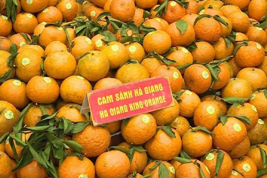 Đặc sản cam sành Hà Giang