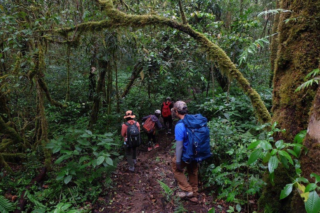Giữ thăng bằng khi trekking. Hình: Sưu tầm