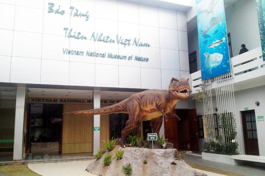 Bảo tàng Thiên nhiên Việt Nam. Hình: Sưu tầm