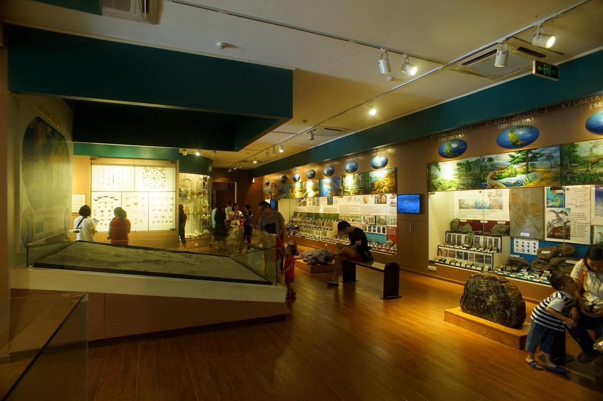 Bảo tàng là nơi lưu trữ những giá trị thiên nhiên quý giá của Việt Nam trong 3,6 tỷ năm qua. Hình: Sưu tầm