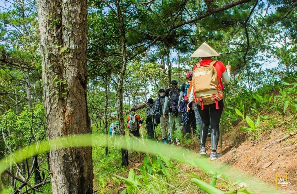 Người đi trekking chỉ có một phương tiện di chuyển duy nhất đó chính là đôi chân. Hình: Sưu tầm